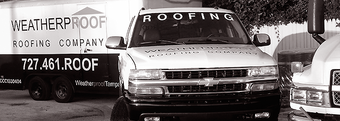 See if you need a new roof, or just a repair for your Dunedin home.